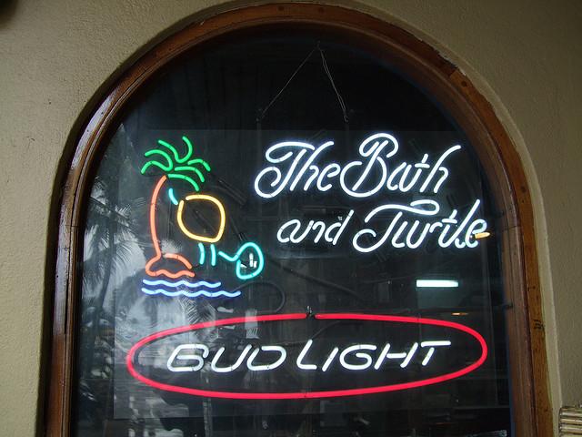 turtle virgin and gorda bath
